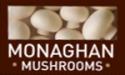 monaghan-mushrooms